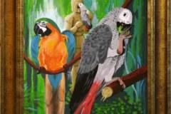 kingofparrots