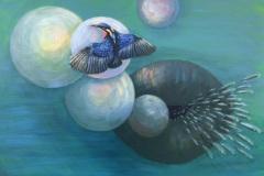 Kolibrik-a-ryby